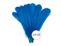 1/4 Lb - Turquoise Blue Turkey Tom Rounds Secondary Wing Quill Wholesale Feathers (Bulk)