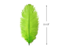 "10 Pieces - 11-13"" Lime Green Bleached & Dyed Ostrich Drabs Body Feathers"