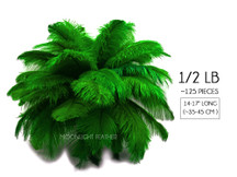 """1/2 Lb - 14-17"""" Kelly Green Ostrich Large Drab Wholesale Feathers (Bulk)"""