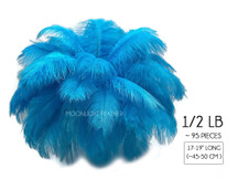 "1/2 Lb - 17-19"" Turquoise Ostrich Large Drab Wholesale Feathers (Bulk)"