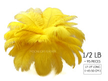 "1/2 Lb - 17-19"" Yellow Ostrich Large Drab Wholesale Feathers (Bulk)"
