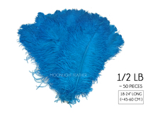 "1/2 Lb. - 18-24"" Turquoise Blue Large Ostrich Wing Plume Wholesale Feathers (Bulk)"
