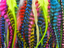100 Pieces - Colorful Thick Long Rooster Hair Extension Wholesale Feathers (Bulk)
