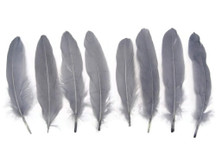 1 Pack - Grey Goose Satinettes Loose Feathers 0.3 Oz.