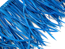 1 Yard - Turquoise Blue Goose Biots Stripped Wing Wholesale Feather Trim