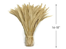 """1/2 lbs. - 16-18"""" Ivory Strung Natural Bleached Rooster Coque Tail Wholesale Feathers (Bulk)"""