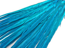 "50 Pieces - 20-22"" Turquoise Blue Bleached & Dyed Long Ringneck Pheasant Tail Wholesale Feathers (Bulk)"