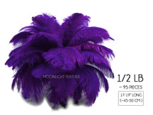 "1/2 Lb - 17-19"" Purple Ostrich Large Drab Wholesale Feathers (Bulk)"
