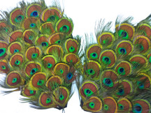 1 Piece - Natural Green Iridescent Peacock Tiny Eyes Handmade Feather Pad