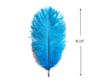 "10 Pieces - 8-10"" Turquoise Blue Ostrich Dyed Drabs Feathers"