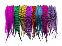 100 Pieces - Colorful Short Whiting Farm Rooster Hair Extension Wholesale Feathers (Bulk)