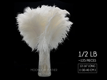 "1/2 Lb - 12-16"" Snow White Ostrich Tail Wholesale Fancy Feathers (Bulk)"
