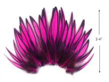 1 Dozen - Hot Pink Whiting Farms BLW Laced Hen Cape Loose Feathers