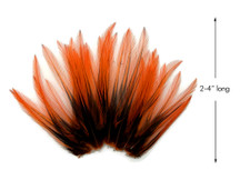 10 Pieces - Orange Dyed BLW Laced Short Rooster Cape Whiting Farms Feathers