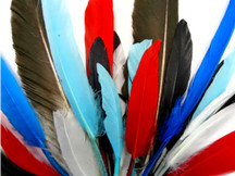 1 Pack - Colorful Mix Dyed Duck Cochettes Loose Wing Quill Feather 0.30 Oz.
