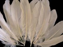 1/4 Lb - Ivory Goose Satinettes Wholesale Loose Feathers (Bulk)