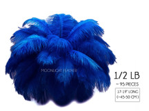 "1/2 Lb - 17-19"" Royal Blue Ostrich Large Drab Wholesale Feathers (Bulk)"