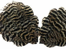 1 Piece - Natural Peacock Chinchilla Plumage Handmade Feather Pad