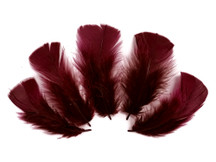 1/4 Lb - Burgundy Turkey T-Base Wholesale Body Plumage Feathers (Bulk)