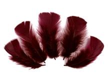 1/4 Lb - Burgundy Turkey T-Base Wholesale Body Plumage Feathers (Bulk)