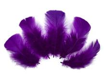 1/4 Lb - Purple Turkey T-Base Wholesale Body Plumage Feathers (Bulk)