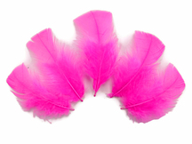 1/4 Lb - Hot Pink Turkey T-Base Wholesale Body Plumage Feathers (Bulk)