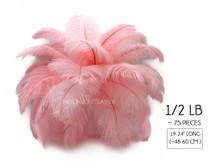 "1/2 Lb - 19-24"" Light Pink Ostrich Drabs Wholesale Feathers (Bulk)"