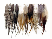 100 Pieces - Natural Tone Short Whiting Farm Rooster Hair Extension Wholesale Feathers (Bulk)