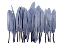 1 Pack - Silver Gray Dyed Duck Cochettes Loose Wing Quill Feather 0.30 Oz.