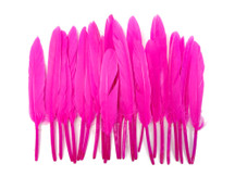 1 Pack - Hot Pink Dyed Duck Cochettes Loose Wing Quill Feather 0.30 Oz.