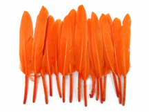 1 Pack - Orange Dyed Duck Cochettes Loose Wing Quill Feather 0.30 Oz.