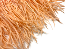 1 Yard - Peach Goose Biots Stripped Wing Wholesale Feather Trim