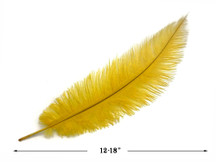 20 Pieces - Gold Mini Spads Ostrich Chick Body Feathers