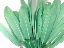 1/4 Lb. - Aqua Green Dyed Duck Cochettes Loose Wing Quill Wholesale Feather (Bulk)