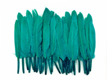 1 Pack - Peacock Green Dyed Duck Cochettes Loose Wing Quill Feather 0.30 Oz.