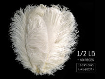 "1/2 Lb. - 18-24"" Off White Large Ostrich Wing Plume Wholesale Feathers (Bulk)"