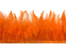 1 Yard - Pumpkin Orange Rooster Neck Hackle Saddle Feather Wholesale Trim