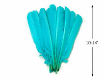 1/4 Lb - Light Blue Turkey Pointers Quill Large Wholesale Feathers (Bulk)