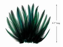 10 Pieces - Peacock Green Dyed BLW Laced Long Rooster Cape Whiting Farms Feathers