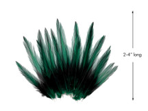 10 Pieces - Peacock Green Dyed BLW Laced Short Rooster Cape Whiting Farms Feathers