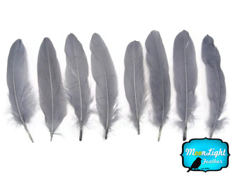 Grey Goose Satinettes Wholesale Loose Feathers (Bulk)