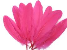 Neon pink wispy goose feathers