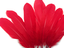 Red Goose Satinettes Wholesale Loose Feathers (Bulk)