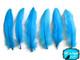 Turquoise Goose Satinettes Wholesale Loose Feathers (Bulk)