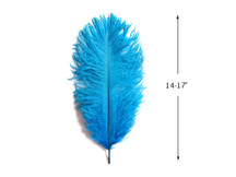 "10 Pieces - 14-17"" Turquoise Blue Ostrich Dyed Drab Body Feathers"