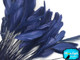 Dark blue trimmed rooster craft feathers