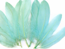 Aqua Blue Goose Satinettes Wholesale Loose Feathers