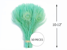 50 Pieces - Aqua Green Bleached & Dyed Peacock Tail Eye Wholesale Feathers (Bulk)