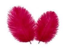 1 Pack - Claret Ostrich Small Confetti Feathers 0.3 Oz