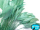 Light green soft rooster feathers for crafts